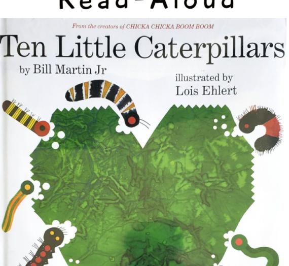 Ten Little Caterpillars Book from Start to Finish (Printable Activities!)