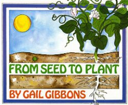 from-seed-to-plant-by-gail-gibbons